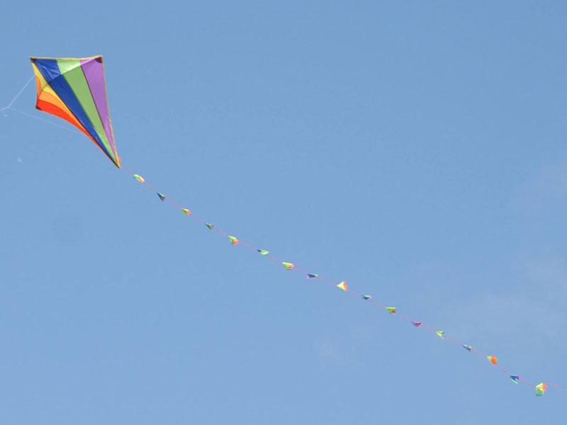 Up, Up & Away! Festival of Flight